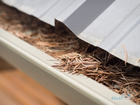 What Are the Benefits of Cleaning Your Gutters