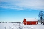 wintry barn